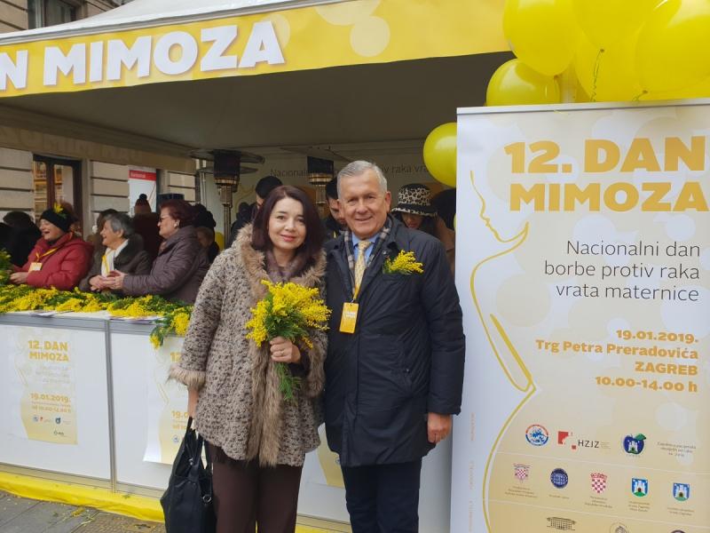 12. dan mimoza (5)
